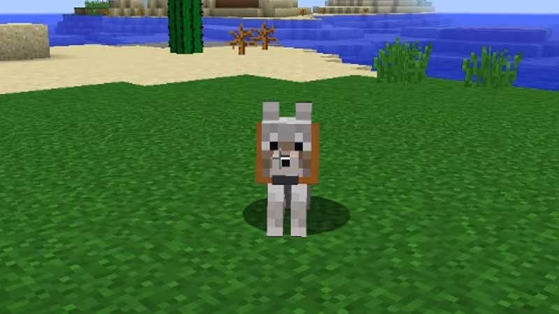wolf minecraft tameable animal
