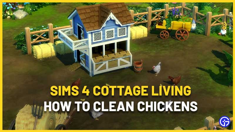 How To Clean Chickens In Sims 4 Cottage Living