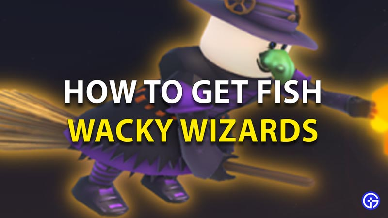 wacky wizards how to get fish