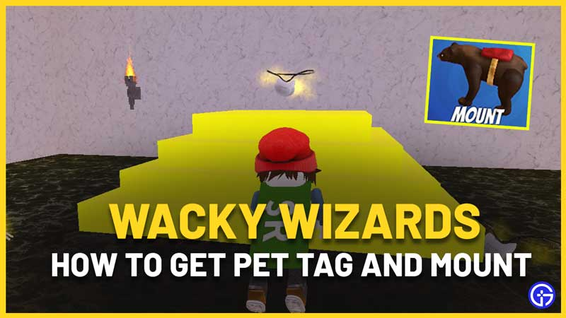 How To Get Pet Tag And Mount In Wacky Wizards Roblox
