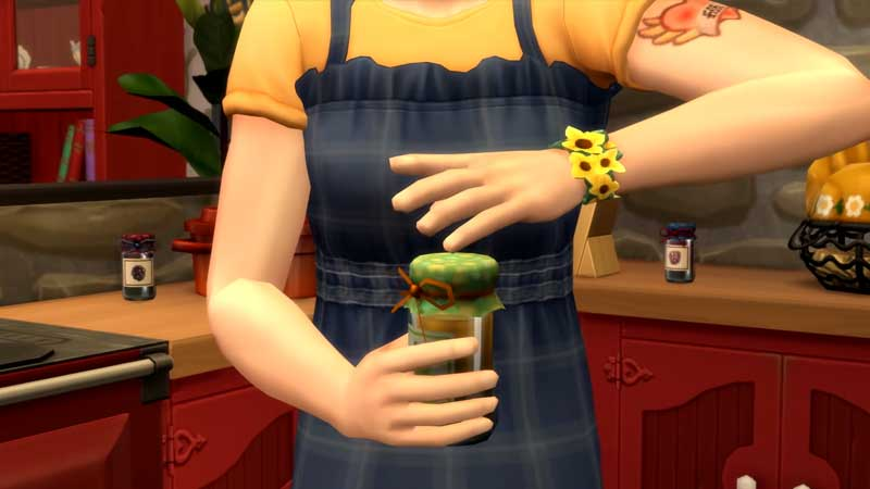Sims 4 Canning