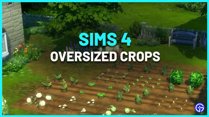 Sims 4 Cottage Living Oversized Crops Guide