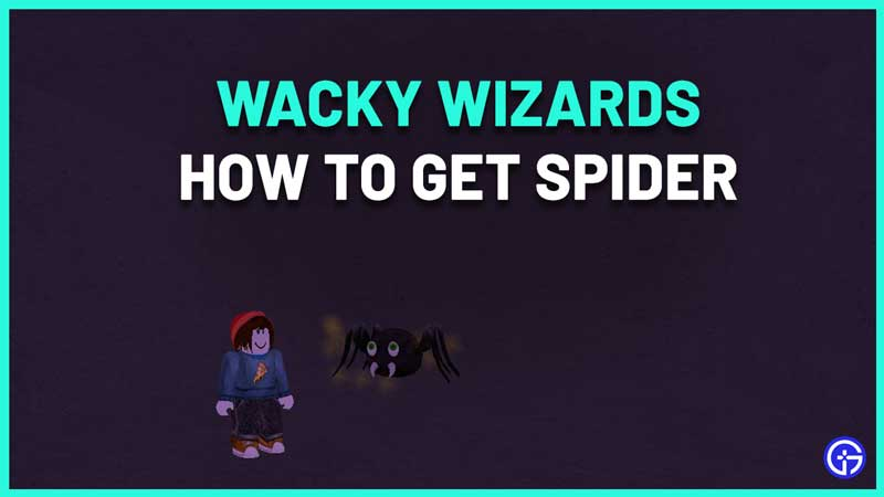 Where to Find the Spider Ingredient in Wacky Wizards Roblox