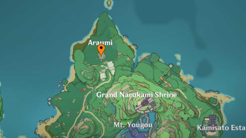 Araumi Puzzle Location 1