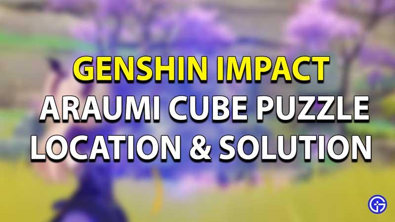 Araumi Puzzle Solution