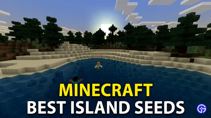 Minecraft Survival Island Seeds