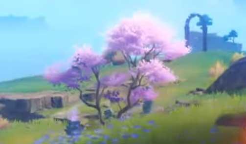 Genshin Impact Sakura Tree Location