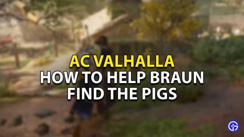 how to help braun find pigs ac valhalla