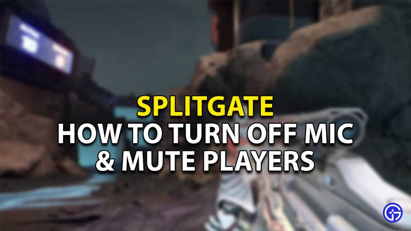 how to turn off mics and mute players splitgate