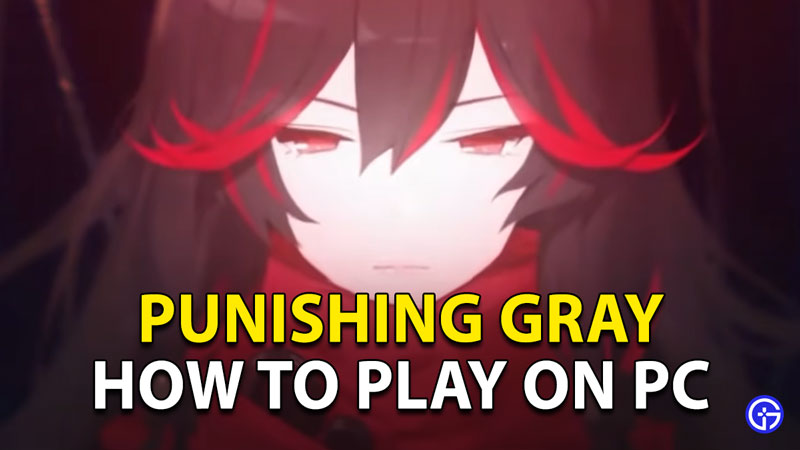Punishing Gray Raven PC: How To Play On PC