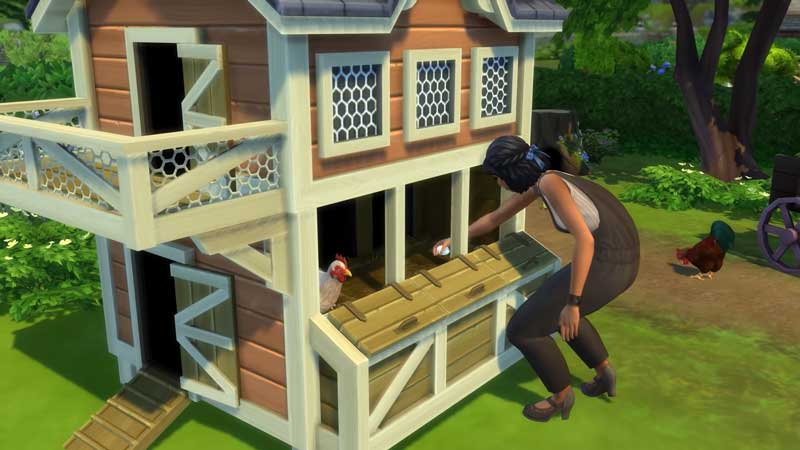 Sims 4 Cottage Life: How To Get Eggs and Hatch Them