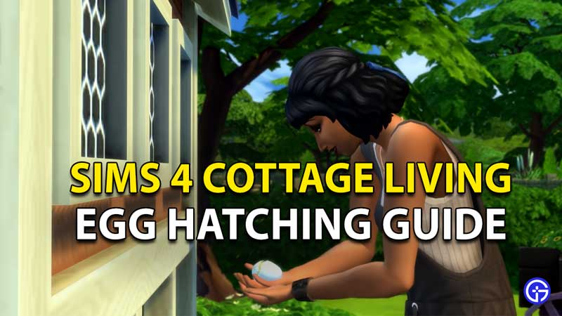 Sims 4 Cottage Living: How To Get Eggs and Hatch Them