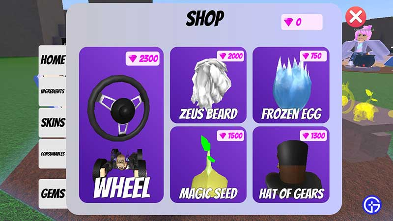 wacky wizards premium items