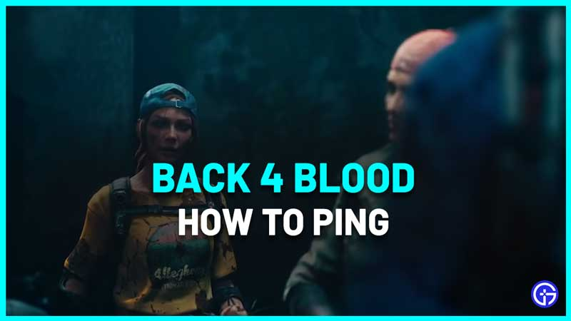 How To Ping In B4B