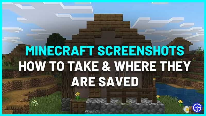 Where Are The Minecraft Screenshots Saved