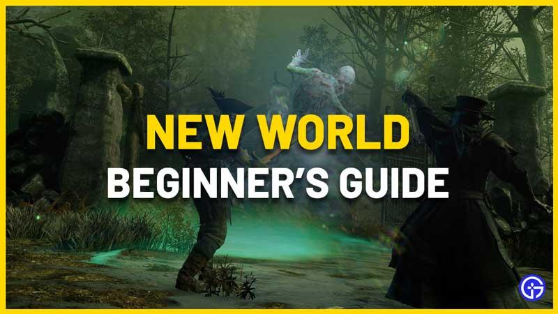 new world beginners guide