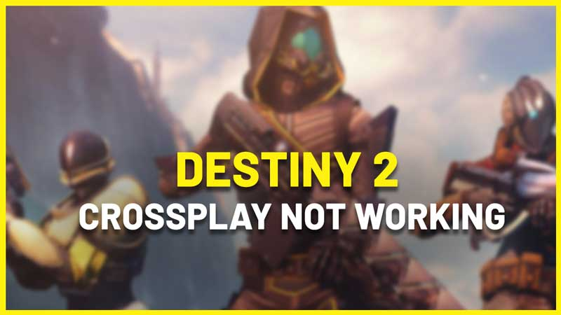 destiny 2 crossplay not working