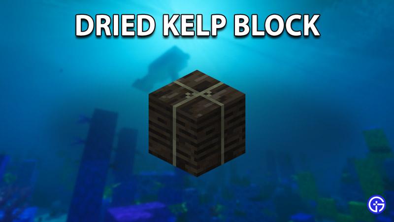 dried kelp block