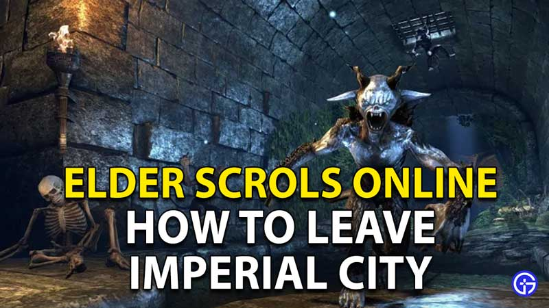 Elder Scrolls Online (ESO): How To Leave Imperial City