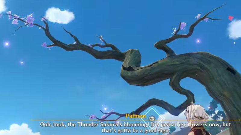 Sakura Aborism Genshin Impact: All Tree Locations