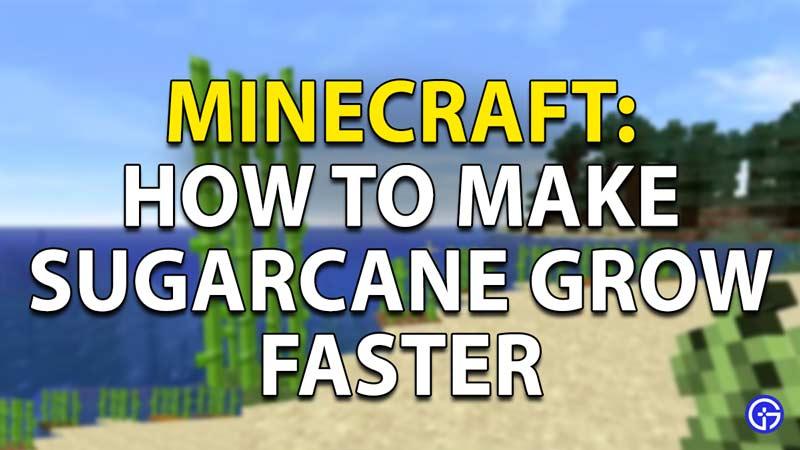 sugarcane minecraft