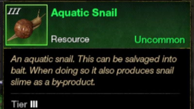 New World Catch Snail