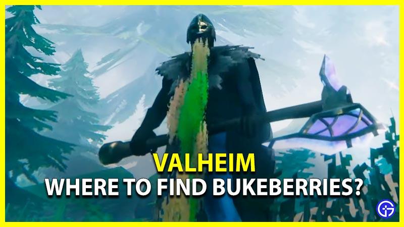Bukeberries Valheim