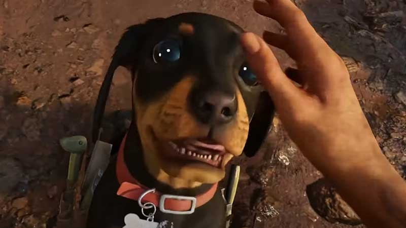 can you pet the dog in far cry 6