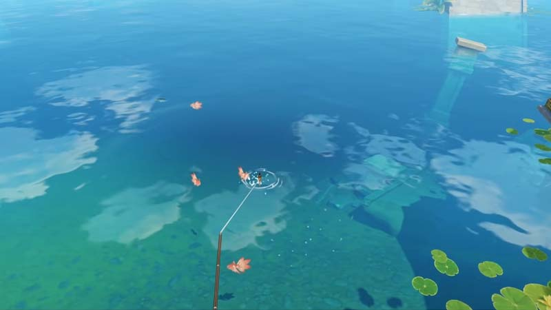 Point Fishing Spots Genshin Impact All Fish Type