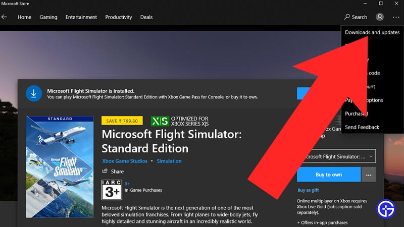 cant download Update for MSFS 2020