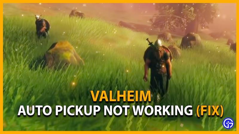 Valheim Auto Pickup Not Working Fix