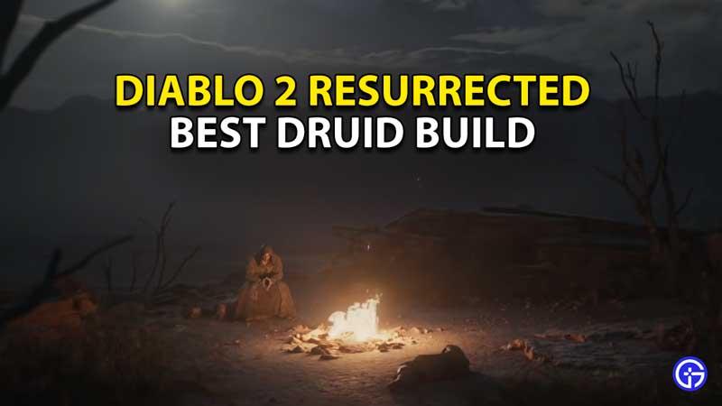 best druid build diablo 2 resurrected
