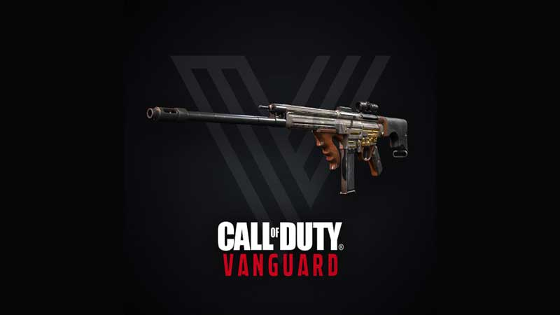 cod vanguard beta weapons