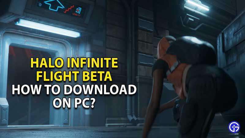 how to download halo infinite flight beta on pc