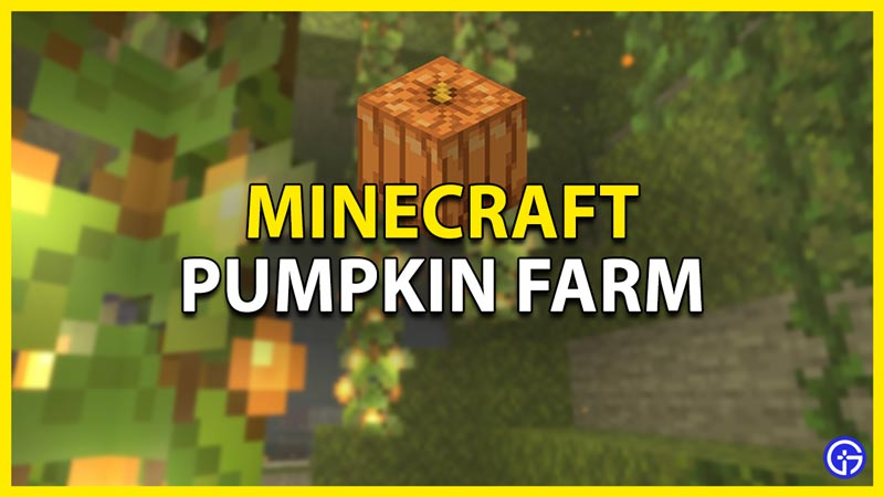 how to make a pumpkin farm in minecraft