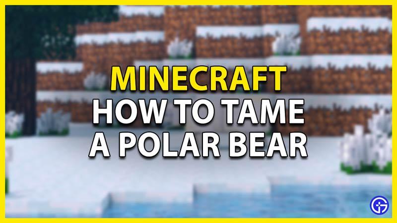 how to tame a polar bear minecraft