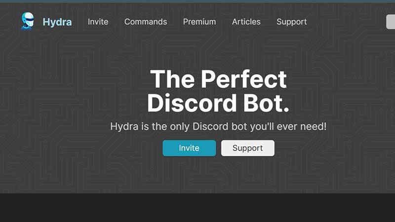 hydra music bot