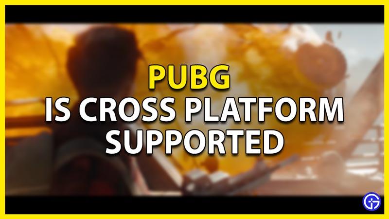 pubg cross platform