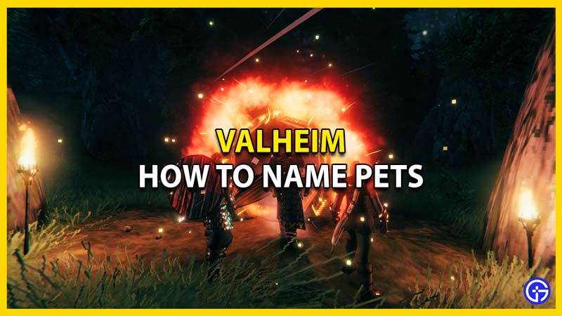 how to name pets in valheim