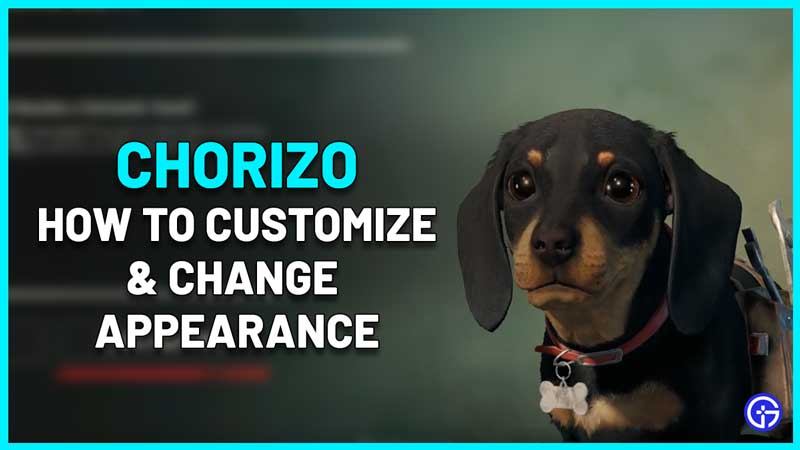 how to customize change appearance of chorizo in far cry 6