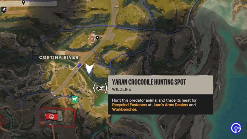 croc hunt river