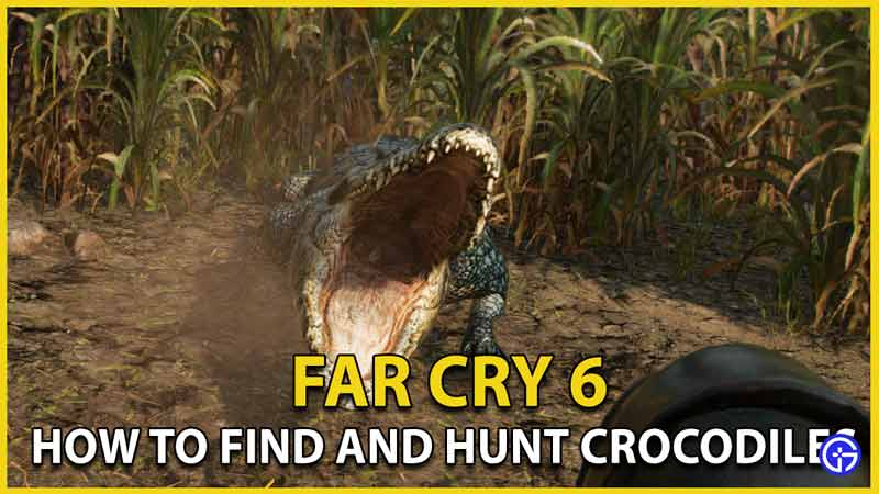 how to find and hunt crocodiles