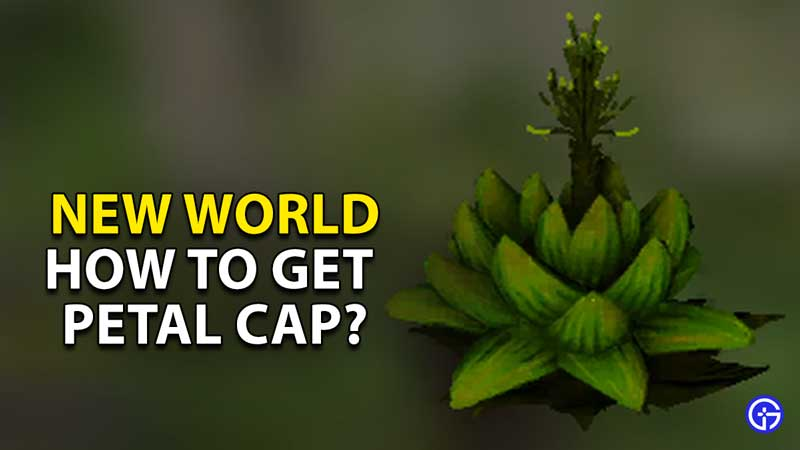 how to get fronded petal cap new world
