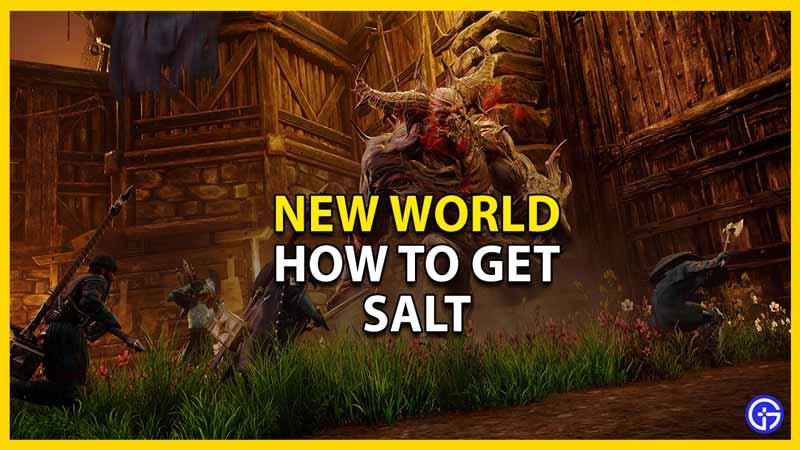 new world how to get salt