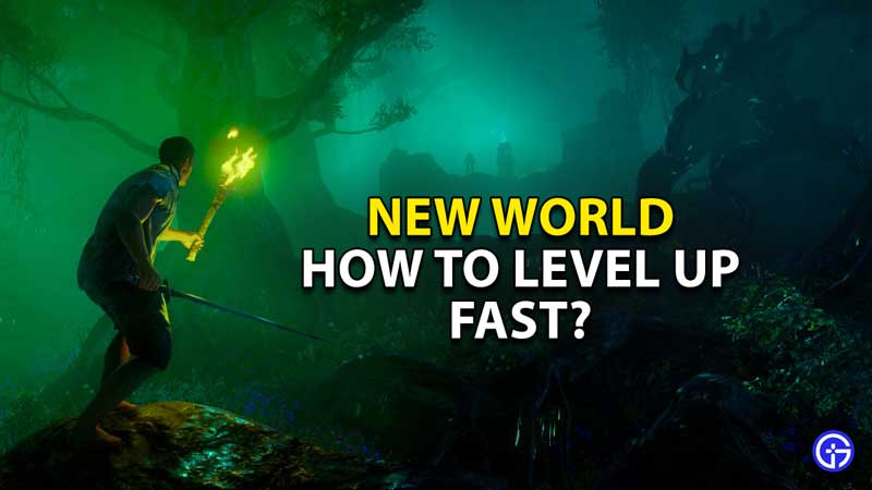 how to level up fast new world