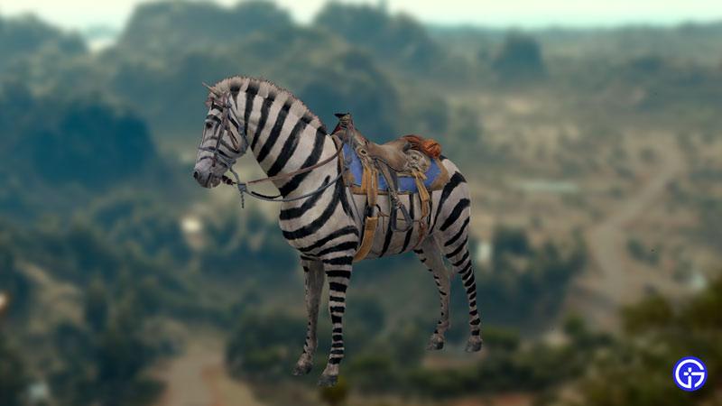 mogote zebra