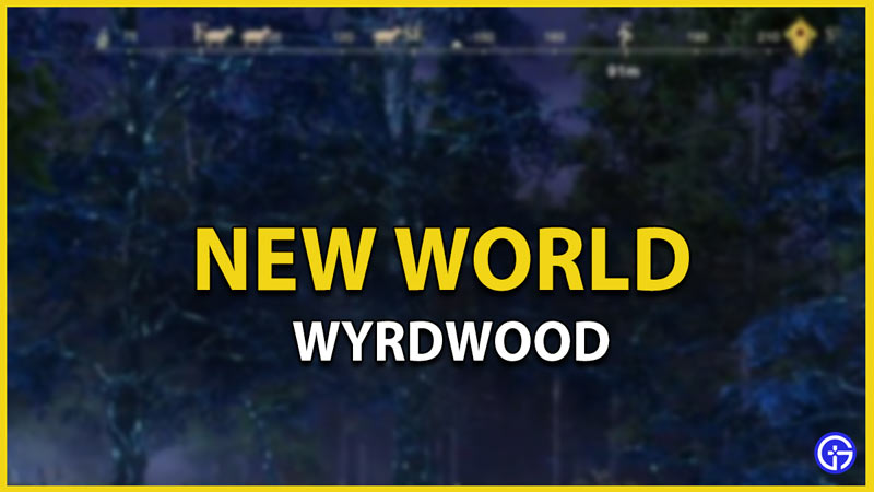 new world wyrdwood get use and find