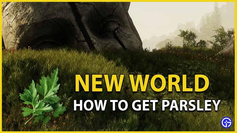 parsley new world