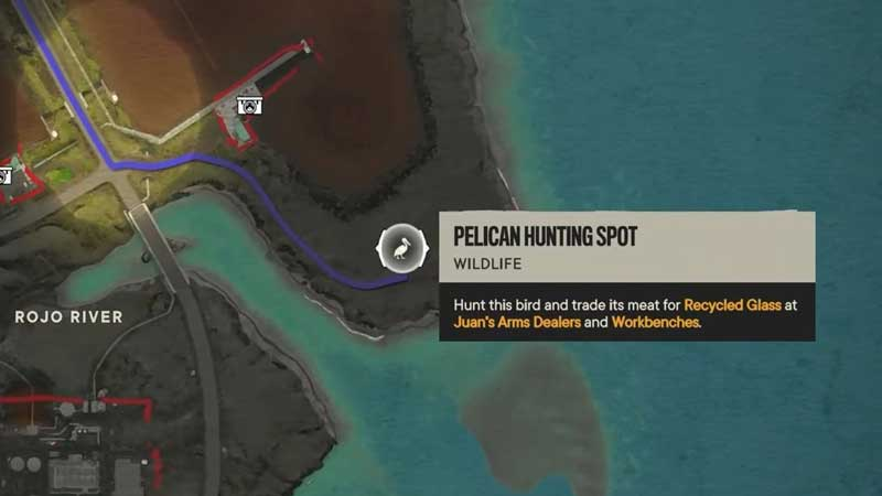 pelican-location-where-to-find-fc6