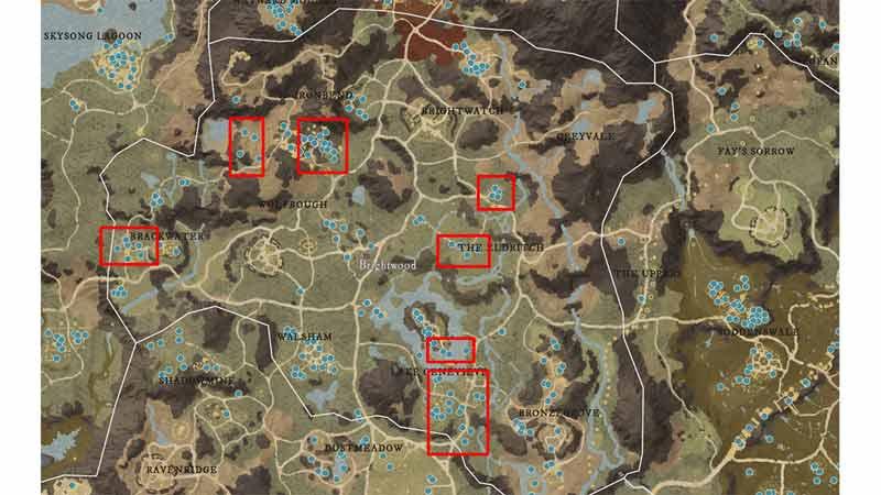new world brightwood salt locations